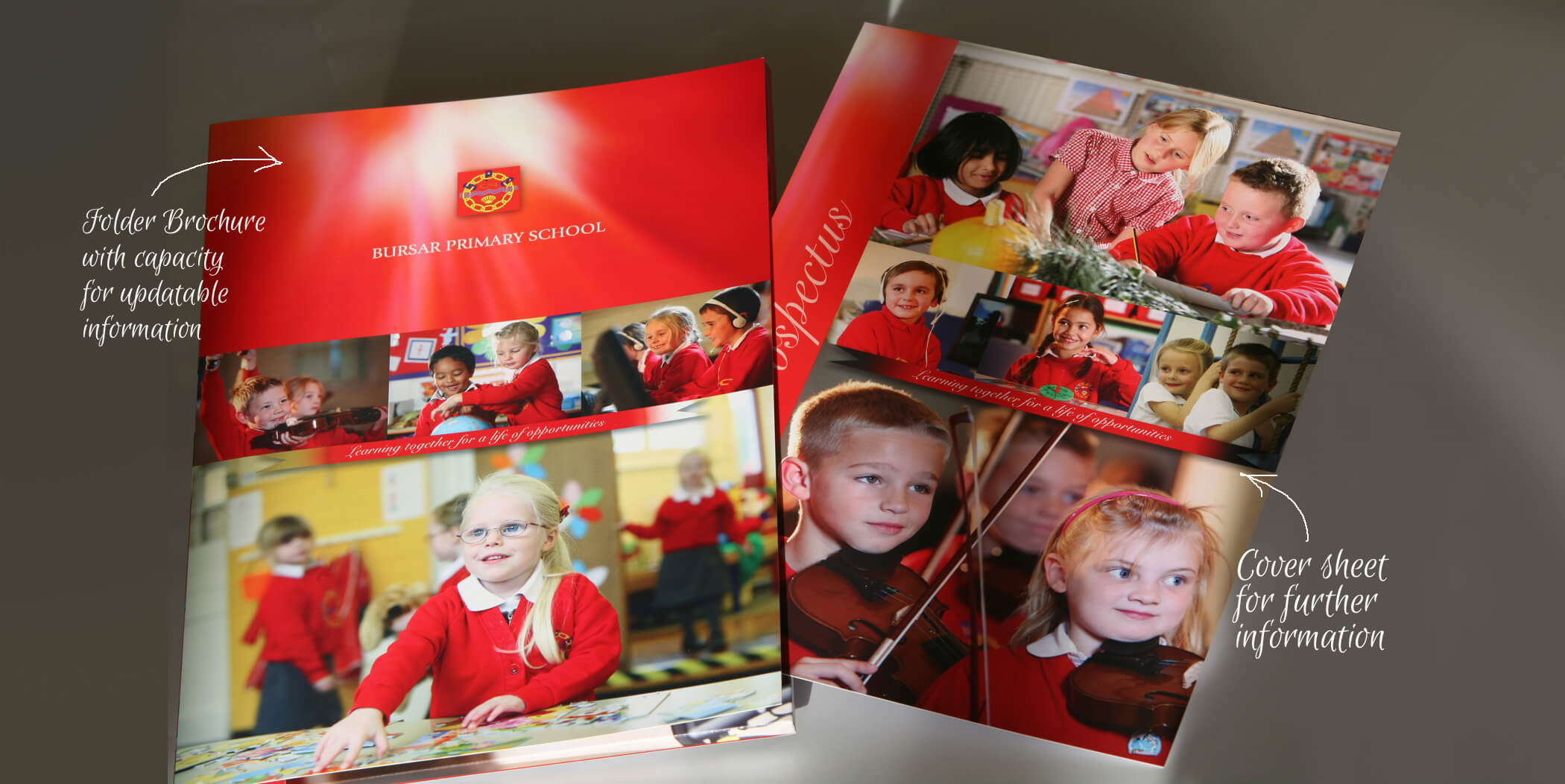 lincolnshire school brochures design