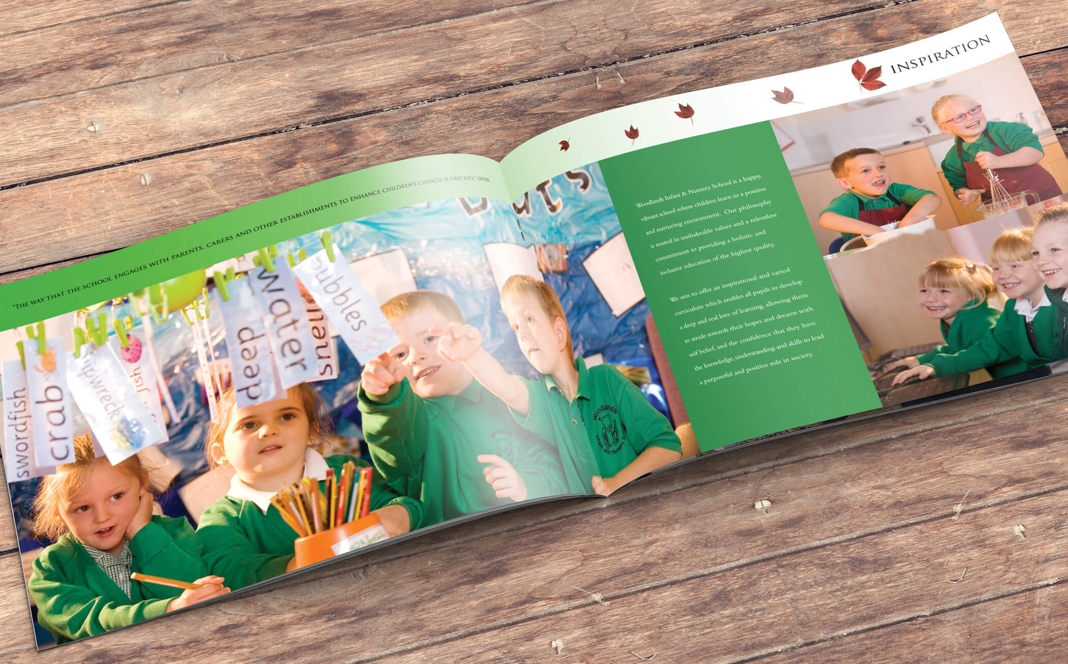 primary school brochure design